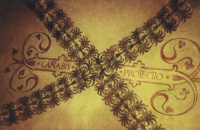 CANABIS PROTECTIO - Hanf ist Schutz