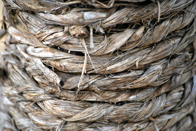 rope-19446_640