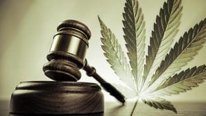colorado_marijuana_laws-300x169