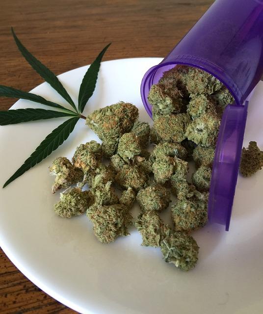 cannabis-1418325_640