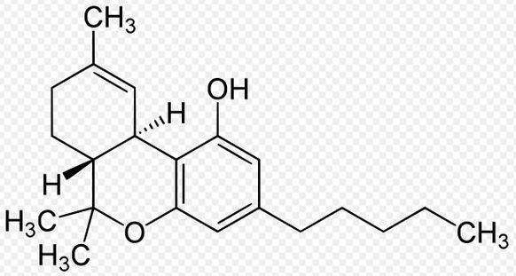 CBD chemische Zusammensetzung Bild: Wikipedia