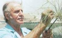 Dr. Hassan Ragab mit Papyrus, 1995 ca.
